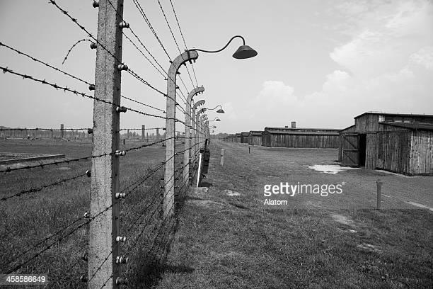 auschwitz campo di concentramento - campo di concentramento foto e immagini stock