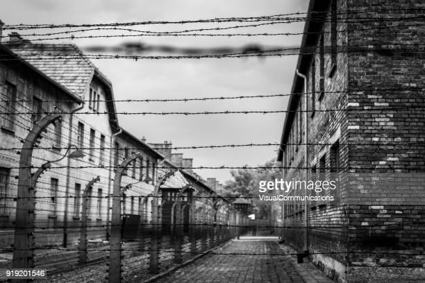 auschwitz concentration camp. - concentration camp stock photos and pictures