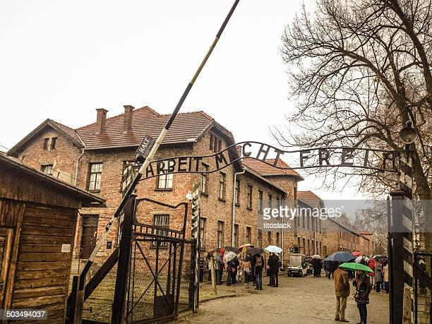auschwitz i - auschwitz stock pictures, royalty-free photos & images