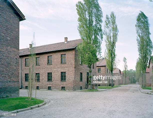 auschwitz - auschwitz concentration camp stock pictures, royalty-free photos & images