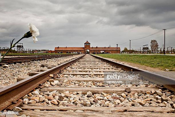 auschwitz - hitler death stock pictures, royalty-free photos & images