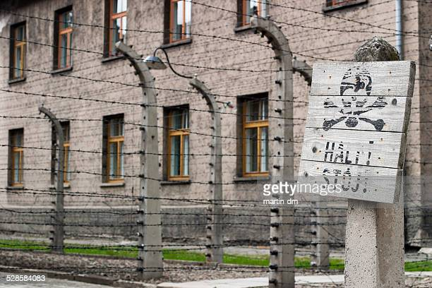 auschwitz - nazism stock pictures, royalty-free photos & images