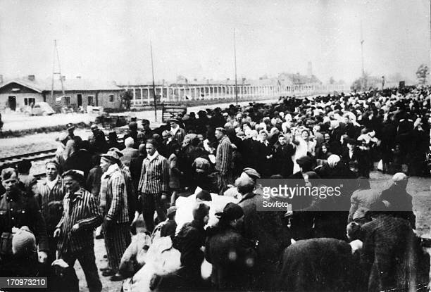 Auschwitz poland train loads of concentration camp victims arriving at the railway station near the camp world war 2