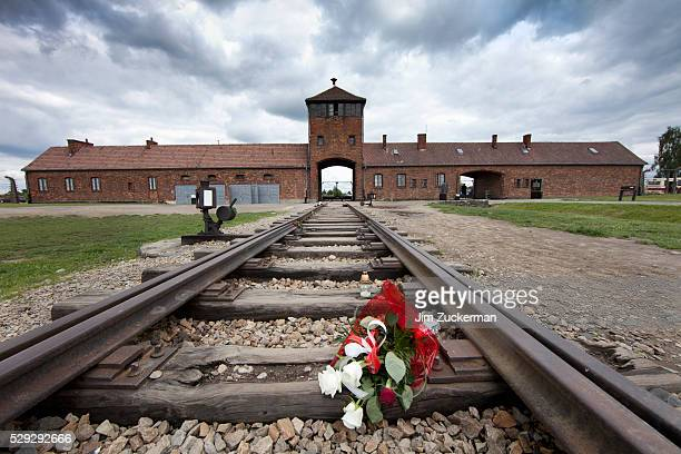 auschwitz-birkenau concentration camp in oswiecim poland - auschwitz concentration camp stock pictures, royalty-free photos & images