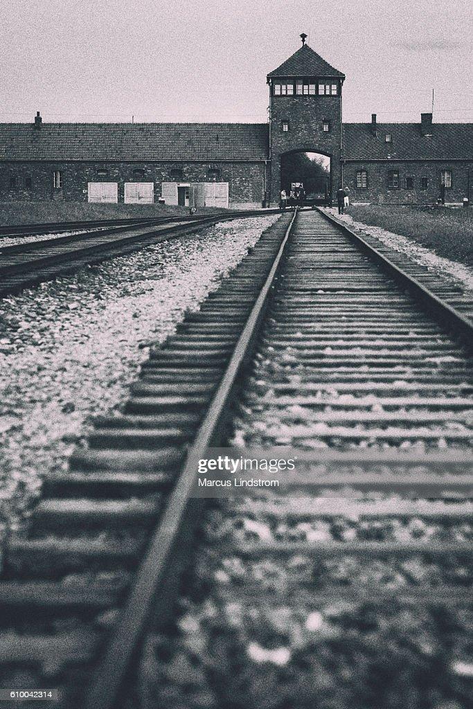 Auschwitz-Birkenau tracks : Stock Photo