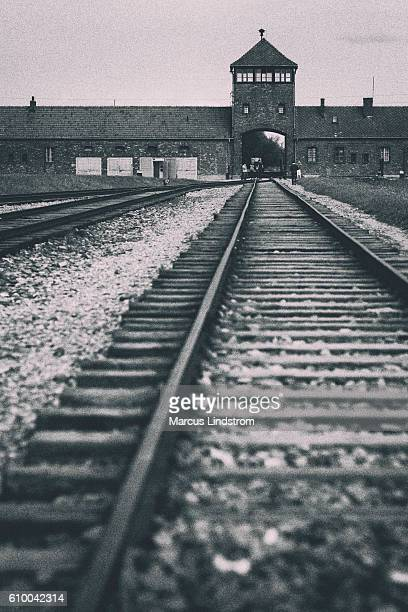 auschwitz-birkenau tracks - concentration camp stock photos and pictures