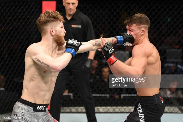 Austin Arnett punches Shane Young of New Zealand in their featherweight bout during the UFC 234 at Rod Laver Arena on February 10 2019 in the...