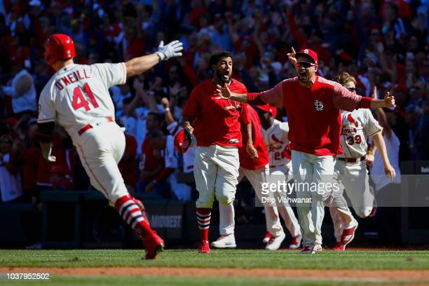 Austin Gomber and Jose Martinez of the St Louis Cardinals rush the field to celebrate after Tyler O'Neill of the St Louis Cardinals hit a walkoff...