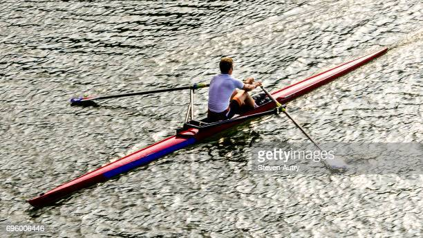 Austin, TX, USA June 10, 2017: A rower in a single scull is rowing on Austin, TX Town Lake.