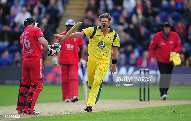 Australia bowler Shane Watson celebrates after bowling England batsman Eoin Morgan during the 4th NatWest Series ODI between England and Australia at...