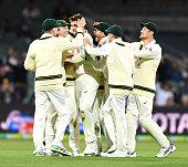 adelaide australia australia celebrate pat cummins