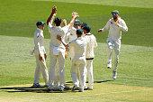 adelaide australia australia celebrate wicket stuart