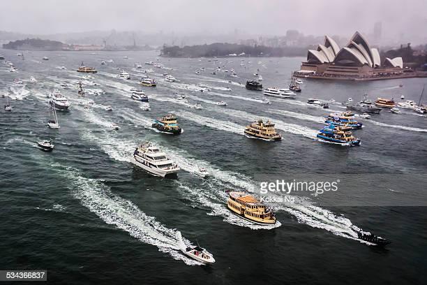 australia day 2015 - australia day stock pictures, royalty-free photos & images