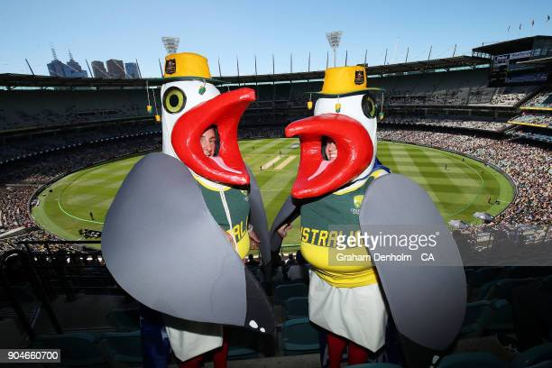 Australia fans dress up for game one of the One Day International Series between Australia and England at Melbourne Cricket Ground on January 14 2018...