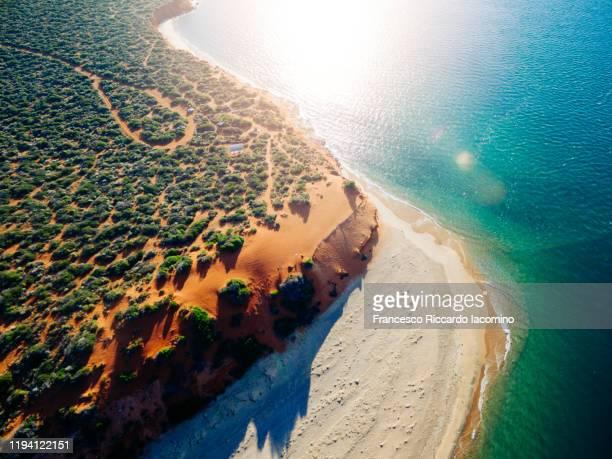 australia from above. orange sand coast and blue ocean. - francesco riccardo iacomino australia foto e immagini stock