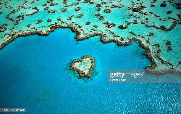 australia, great barrier reef, heart shaped reef, aerial view - nature stock pictures, royalty-free photos & images