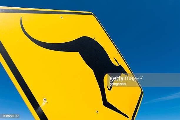Australia: Paso de canguros en primer plano