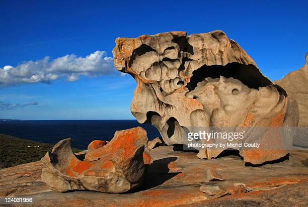 australia  kangaroo island - kangaroo island stock pictures, royalty-free photos & images
