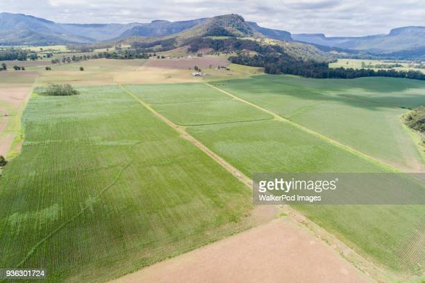 Australia, Landscape with fields and Kangaroo Valley in distance