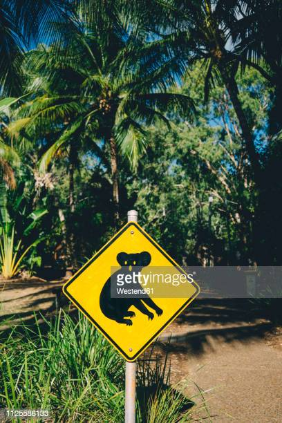 australia, magnetic island, koala animal crossing sign - animal crossing stock pictures, royalty-free photos & images