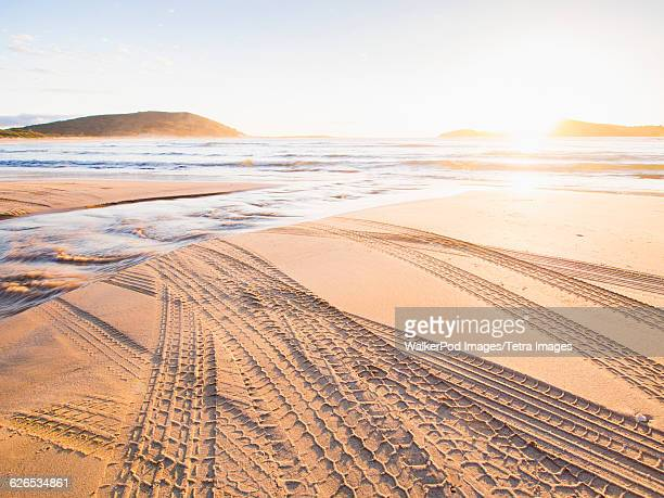 Australia, New South Wales, Jervis Bay, Tire tracks on beach at sunset