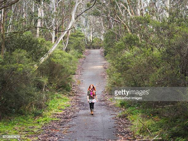 australia, new south wales, katoomba, young woman walking along empty road in forest - katoomba stock pictures, royalty-free photos & images
