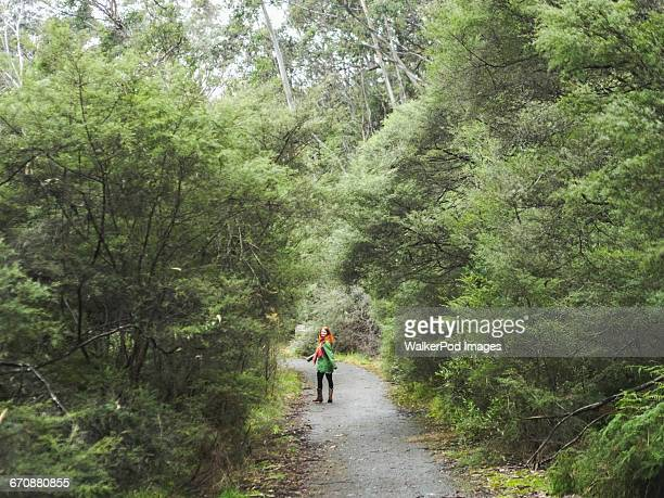 Australia, New South Wales, Katoomba, Young woman walking along empty road in forest