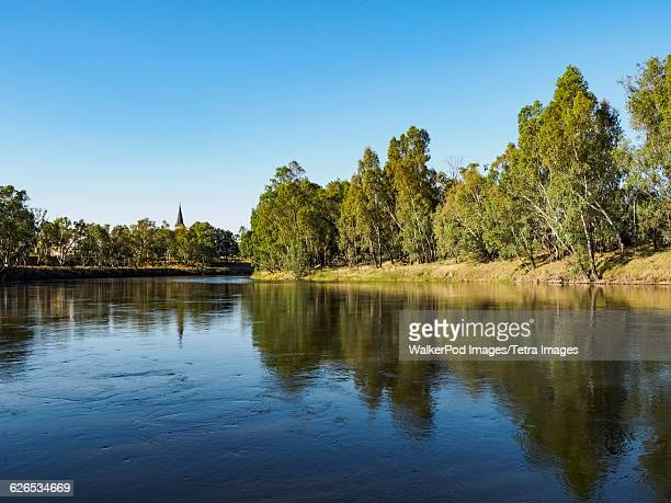 australia, new south wales, wagga wagga, trees reflecting in river - wagga wagga stock pictures, royalty-free photos & images