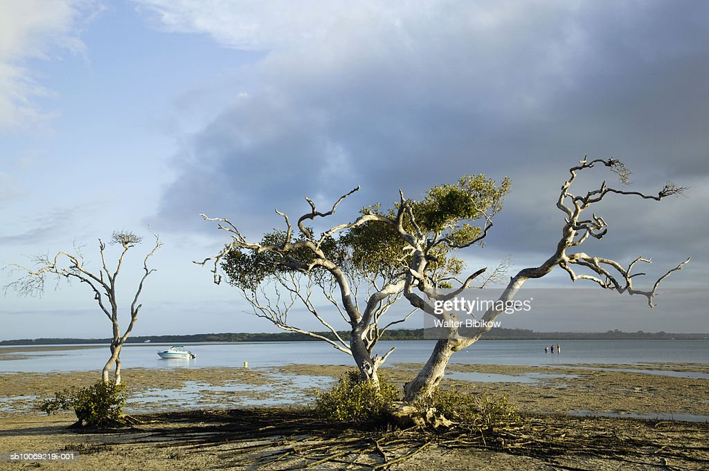 Australia, Queensland, Fraser Island, Rainbow beach : Stockfoto