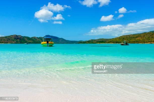australia, queensland, whitsunday island, tour boats at whitehaven beach - 浅い ストックフォトと画像