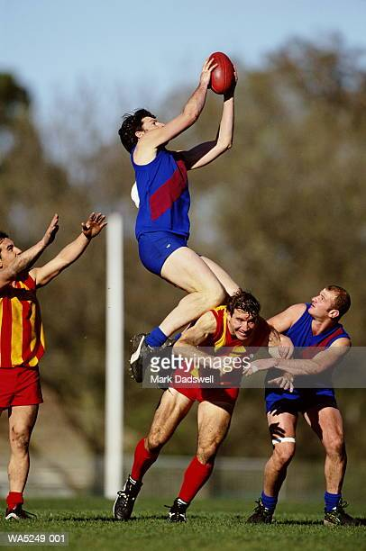 australia rules football player in mid air catching ball - afl stock pictures, royalty-free photos & images
