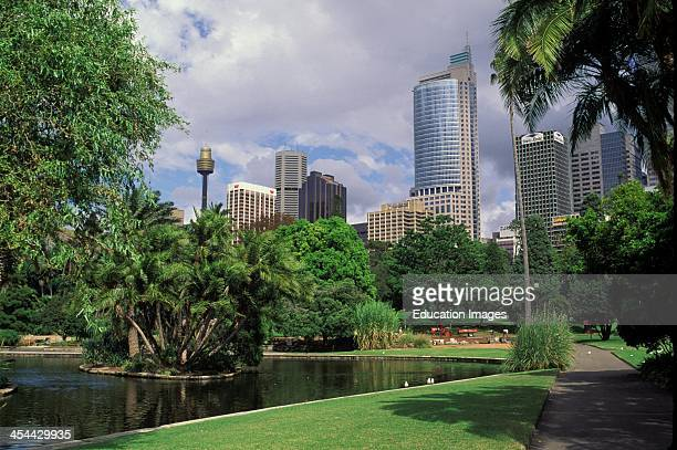 Australia Sydney Botanical Gardens And Skyline In Background