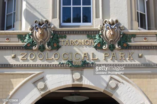 australia: taronga zoo - taronga zoo stock pictures, royalty-free photos & images