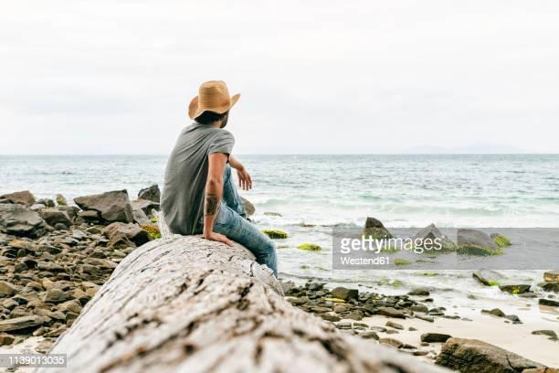 Australia, Tasmania, Maria Island, back view of man sitting on a rock looking at view