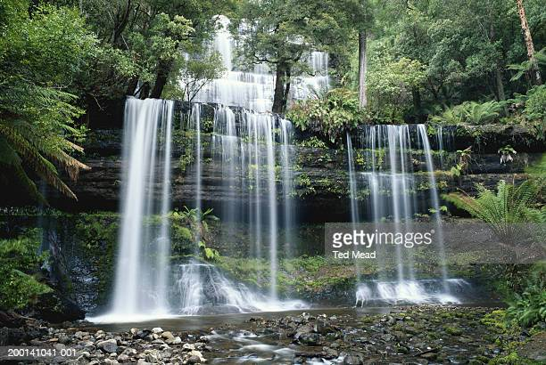 australia, tasmania, mount field national park, russell falls - ted russell stock pictures, royalty-free photos & images