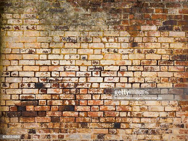 Australia, Victoria, Beechworth, Old brick wall