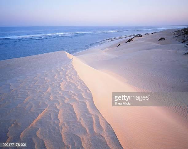 australia, western australia, beach near carnarvon - carnarvon western australia stock photos and pictures