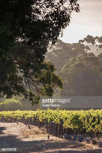 Australia, Western Australia, Exterior