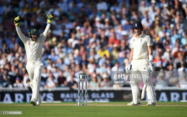 Australia wicketkeeper Tim Paine celebrates as Joe Denly of England is dismissed for 94 runs by Peter Siddle of Australia during day three of the 5th...