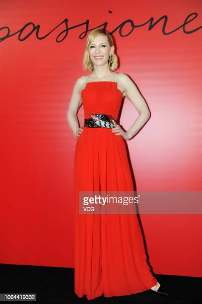 Australian actress Cate Blanchett attends Armani Si Passione Perfume event on November 6 2018 in Shanghai China