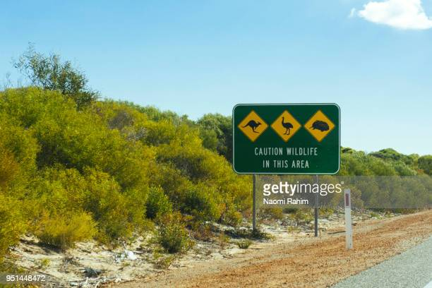 Australian animal road sign, Western Australia