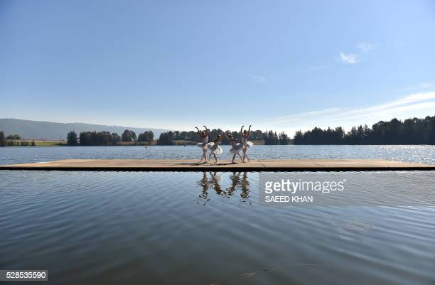 Australian Ballet dancers in white swan tutus pose during a media on a 20metre barge in Penrith Lakes in western Sydney on May 6 2016 / RESTRICTED TO...