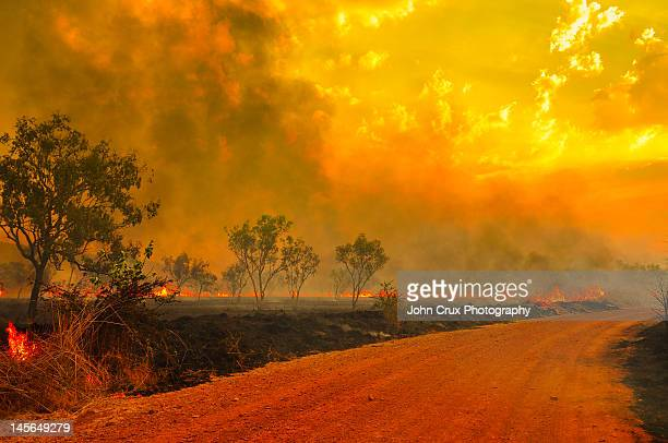 australian bush fires - australian bushfire stock pictures, royalty-free photos & images