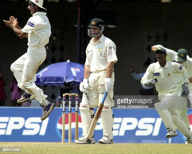 Australian captain Steve Waugh is out leg before wicket to Pakistani fast bowler Shaoib Akhtar as the Pakistani fielders Taufeeq Umar and wicket...