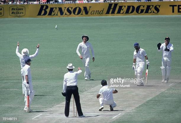 Australian cricket captain Greg Chappell catches Allan Lamb off a ball from Bruce Yardley at the Third Test in the Ashes series Adelaide Australia...