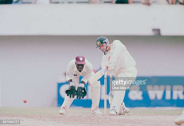 Australian cricketer Steve Waugh during the 4th Test Match between the West Indies and Australia in Jamaica, May 1995.