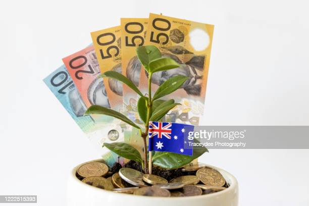 australian currency and flag with a small plant. - australian flag stock pictures, royalty-free photos & images