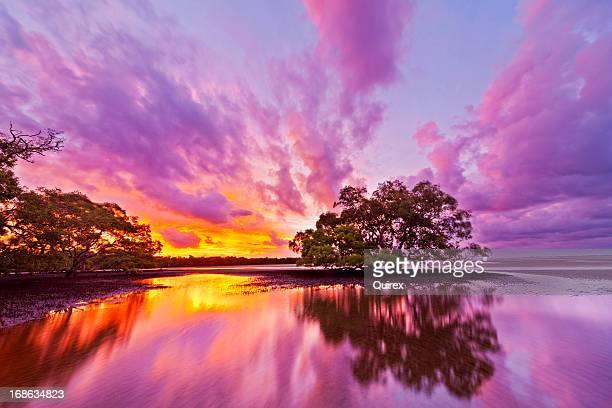 Australian Dreamscape