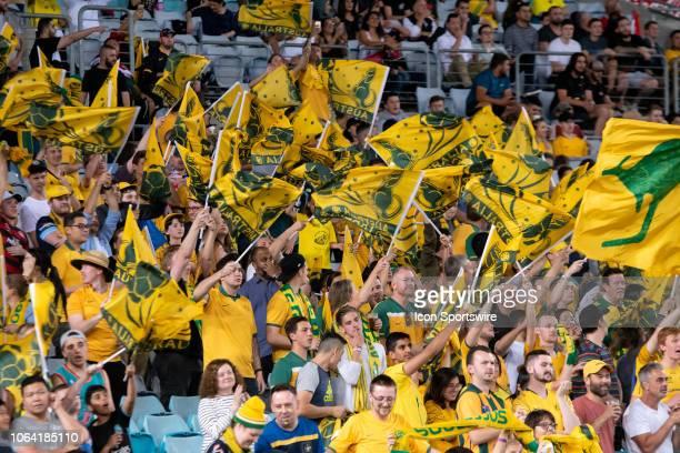 Australian fans at the international soccer match between Australia and Lebanon on November 20 at ANZ Stadium in NSW, Australia.