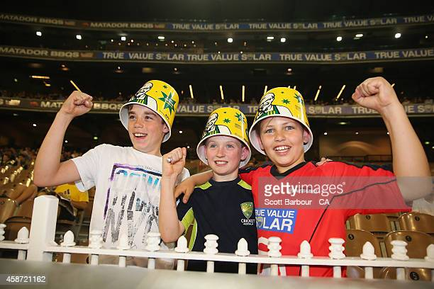 Australian fans in the crowd show their support during game two of the International Twenty20 Series between Australia and South Africa at Melbourne...